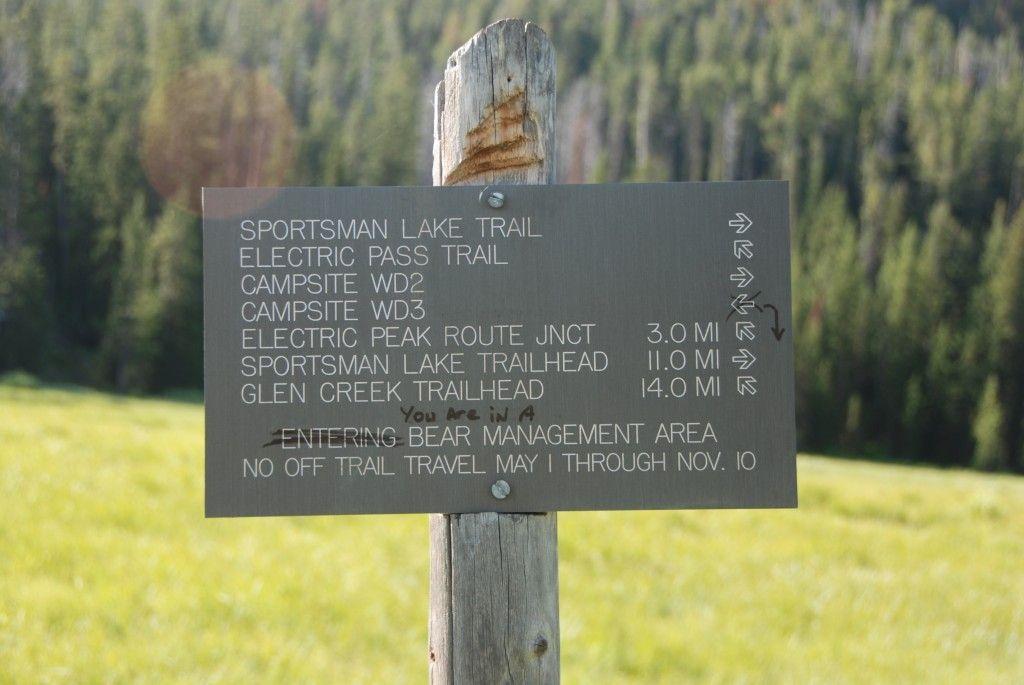 In a bear area?